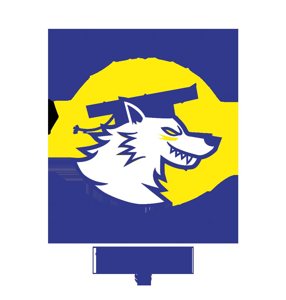 Clubul Sportiv Lumina Wolves